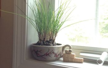kitchen herb garden in a mug, container gardening, how to, repurposing upcycling