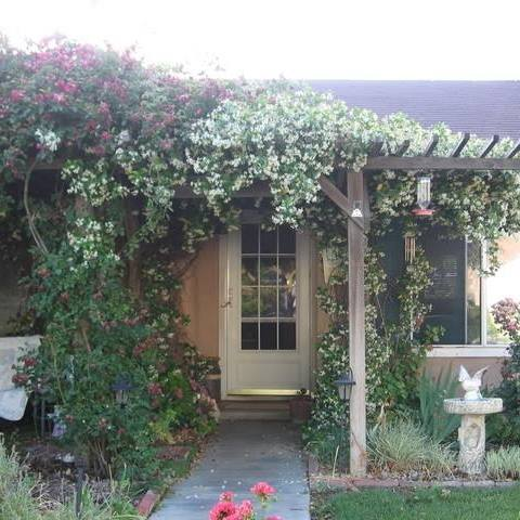 no lawn , curb appeal, gardening, lawn care
