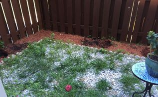 backyard makeover diy landscaping project, how to, landscape, outdoor living, Patio area before