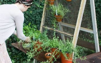diy summer herb garden, container gardening, gardening, how to