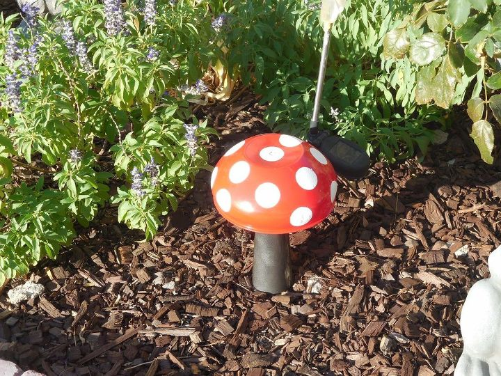 mushrooms, crafts, gardening