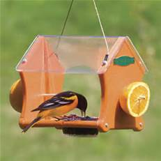 q the jelly in my oriole feeders is covered by bumble bees and wasps , home maintenance repairs, pest control