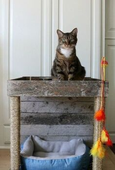 pamper your cat with this cat condo made from a wood pallet, how to, pallet, pets, pets animals, woodworking projects