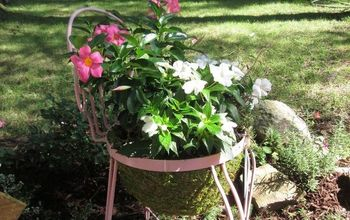 From Thrift Store! To Planter! Beauty Within!