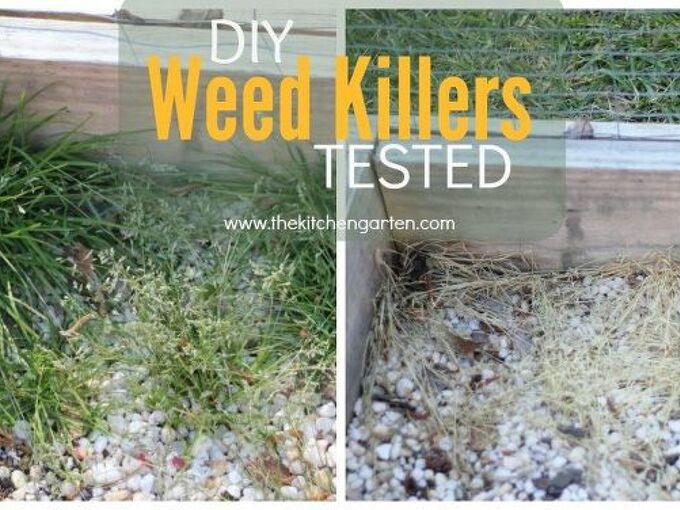diy weed killers tested , gardening, gardening pests, go green, how to