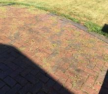 q weeds between interlocking brick patio, concrete masonry, gardening, pest control