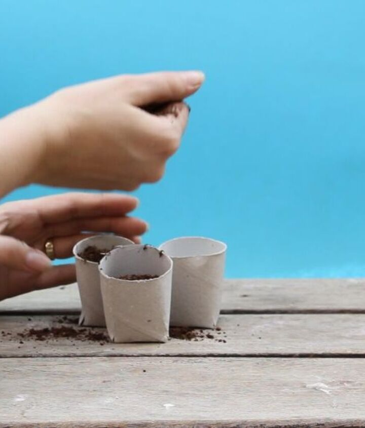 cheap biodegradable plant starter pots