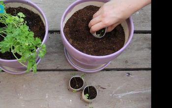 Turn Paper Towel Rolls Into Cheap, Biodegradable, Seed Starter Pots