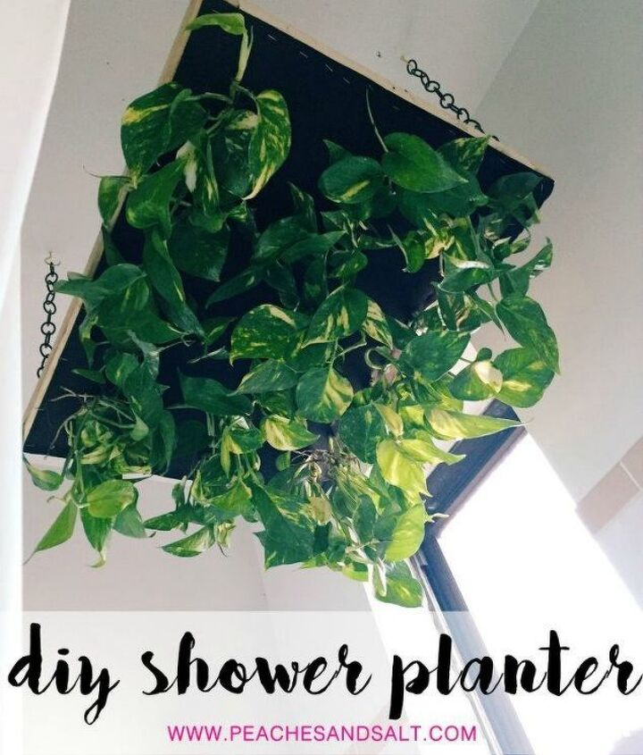 s 16 things you didn t know you could do with chickenwire, Hang plants above your shower