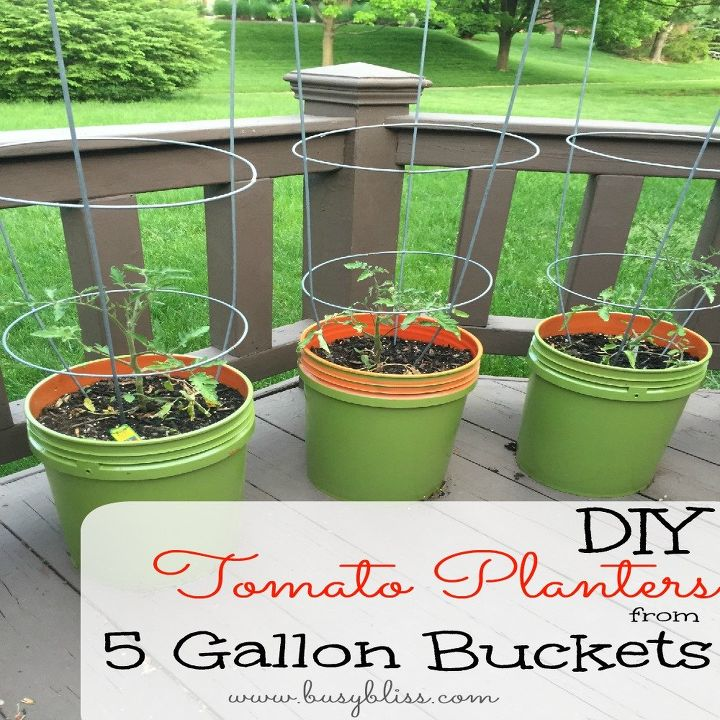 tomato planters from 5 gallon buckets, container gardening, gardening, how to