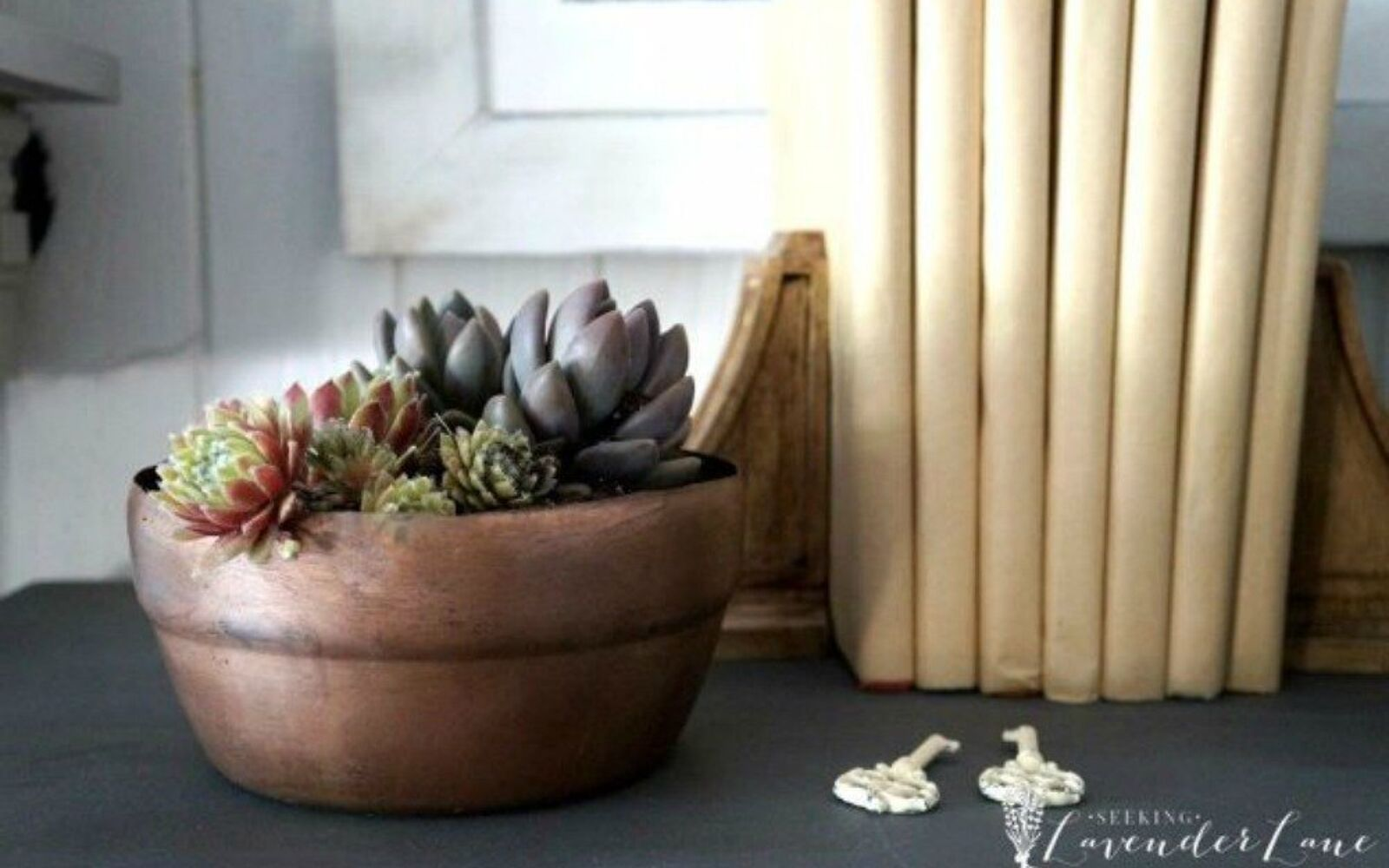 s why everyone is saving their empty food containers, repurposing upcycling, They re beautiful succulent planters