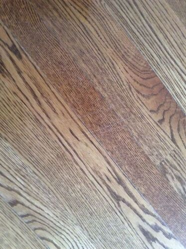 How To Get Rid Of Dog Scratches On Wood Floor Hometalk