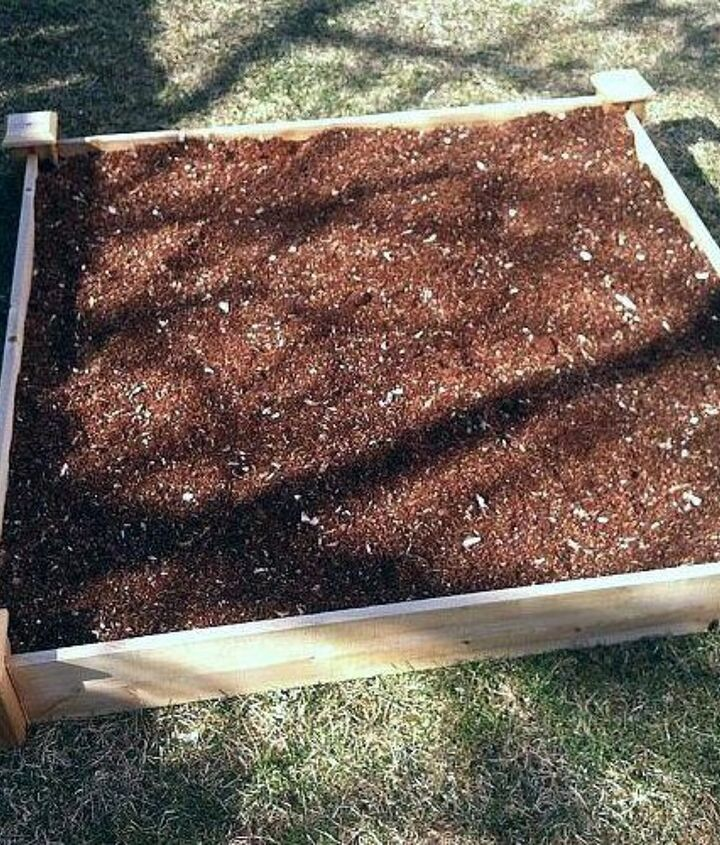 Gently pat the soil to cover up your seeds.