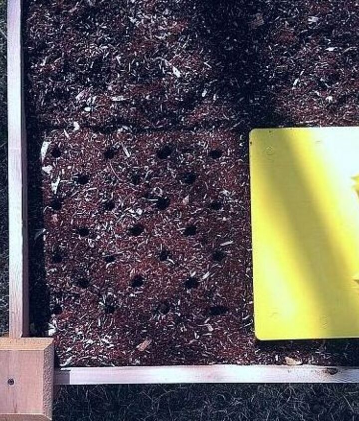 Garden Stamp is one square foot so you can stamp directly or...