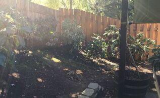 q bark alternative , gardening, landscape, outdoor living, Back corner of yard