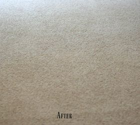best cat urine removal mattress