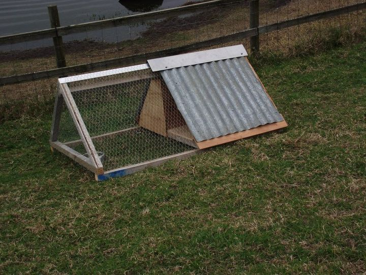 chicken accommodation available for a handsome single young man , animals, outdoor living, pets animals, woodworking projects