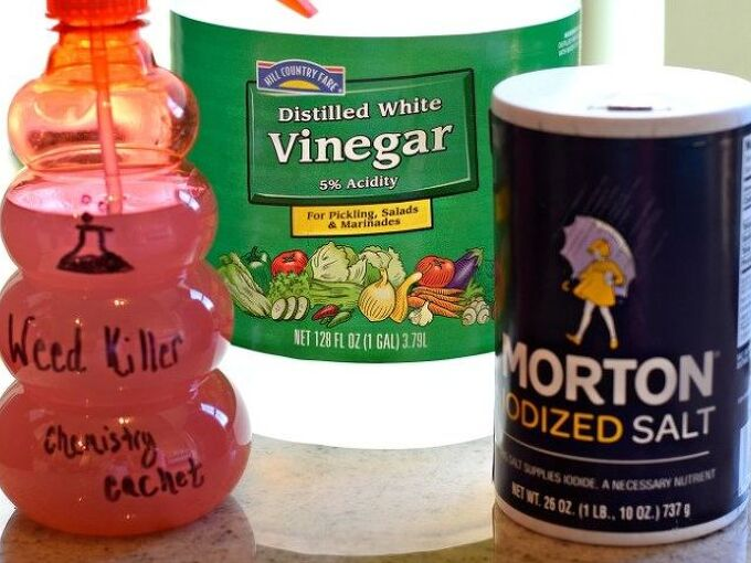 diy homemade weed killer also good for ants with secret ingredient, gardening, how to, pest control