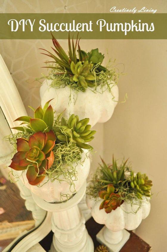 diy succulent pumpkins, container gardening, gardening, succulents