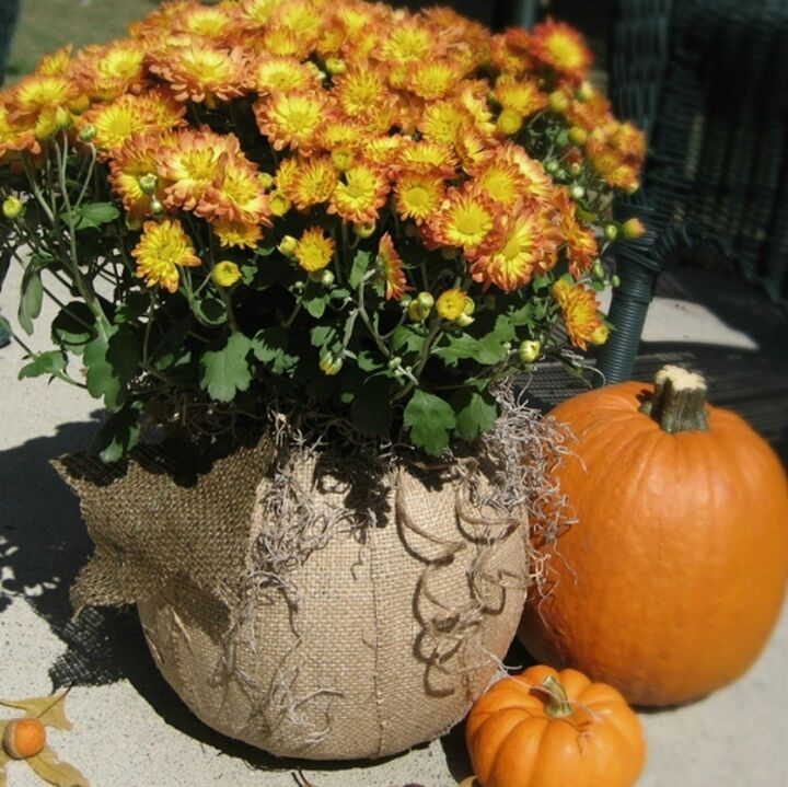 s 9 reasons we can t stop buying pumpkin candy buckets, They can be covered in burlap
