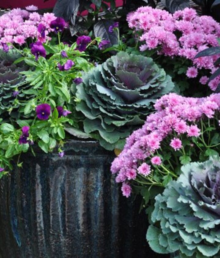 fall container update on a budget, bedroom ideas, concrete masonry, flowers, gardening, ponds water features, window treatments, windows