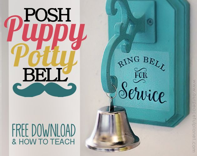 Posh Dog Potty Bell Hometalk