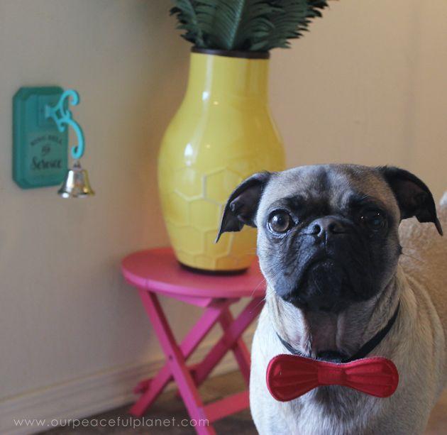 Posh Dog Potty Bell Hometalk