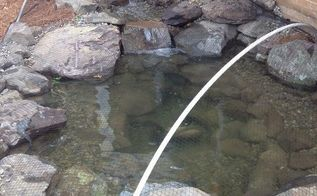 fall pond netting, ponds water features