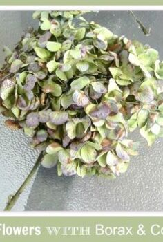 drying flowers with borax cornmeal mixture, crafts, flowers, gardening, home decor