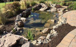 fish pond rebuild, ponds water features