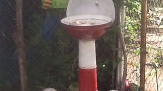 , My old grill is my new Bird Feeder