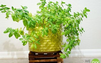 easiest ever plant stand, gardening