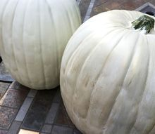 how to repair and paint faux pumpkins, how to