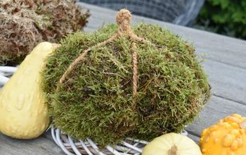 diy moss pumpkins fall decor idea, crafts, gardening, home decor