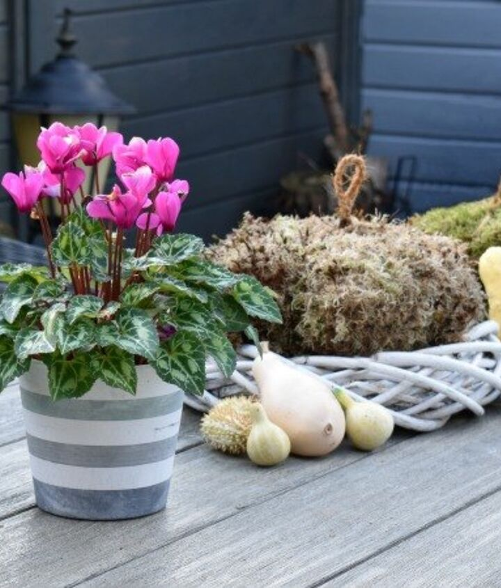 diy moss pumpkins fall decor idea, crafts, gardening, home decor