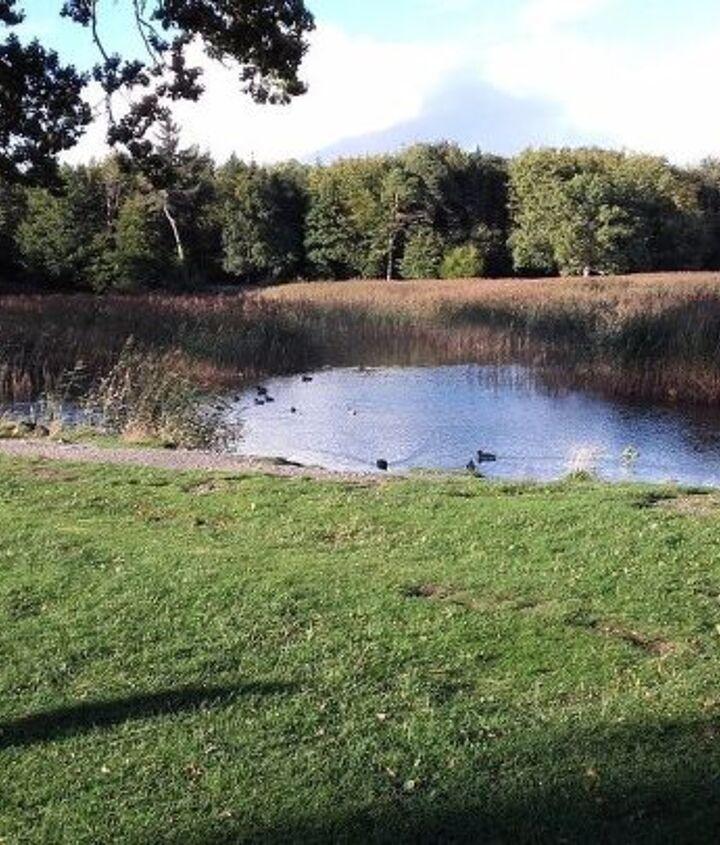 County Laois on an Autumn afternoon.