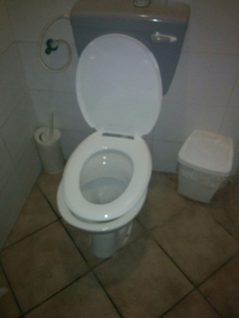 Toilet cover keeps falling off! | Hometalk