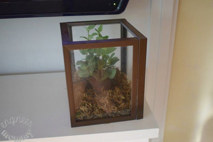 s take picture frames off your walls for these 15 brilliant ideas, Build it into a glass terrarium