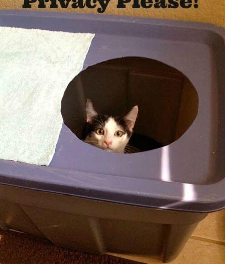 s cat owners 12 ways to hide a litter box in plain site, Repurpose a spare plastic bin