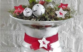christmas plant arrangement, gardening