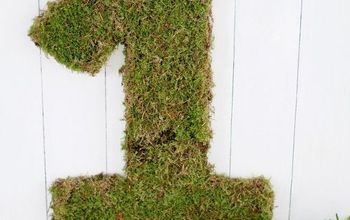 Moss Covered Number Using Living Moss