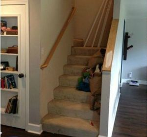 s get rid of your carpet staircase without hiring a contractor, stairs, reupholster