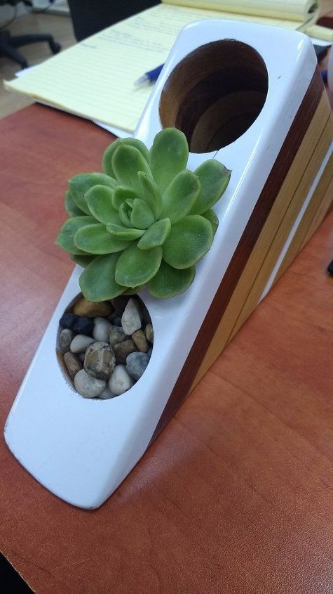 a succulent for your desk organizer, flowers, gardening, organizing, painted furniture, succulents