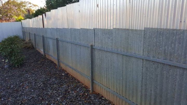 How can I cover up my side fence? | Hometalk