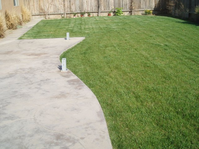 q help badly needed for my yard