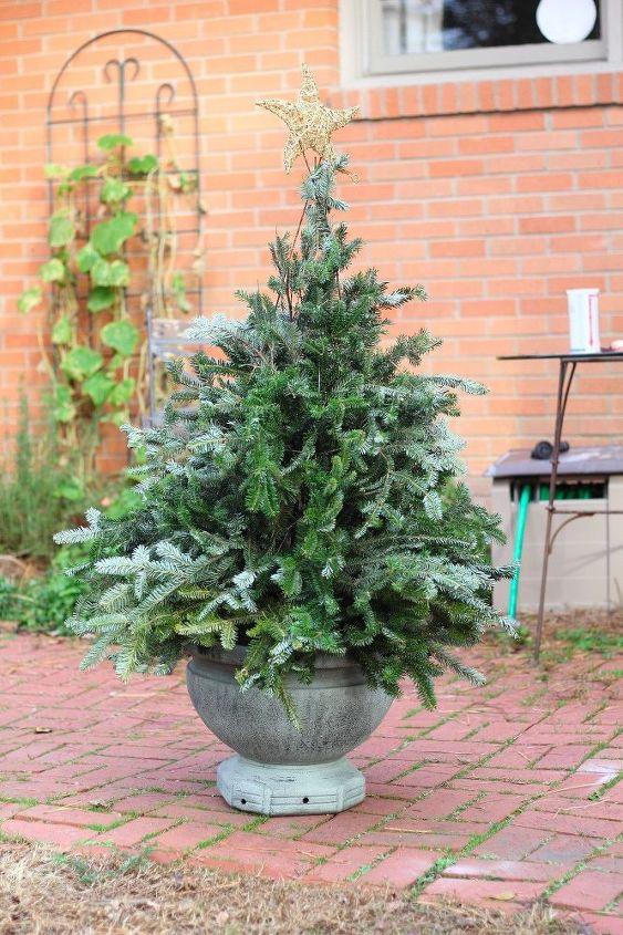 tomato cage christmas tree, gardening