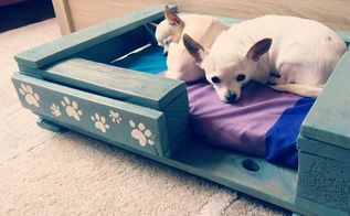 pet bed from pallet video, pallet
