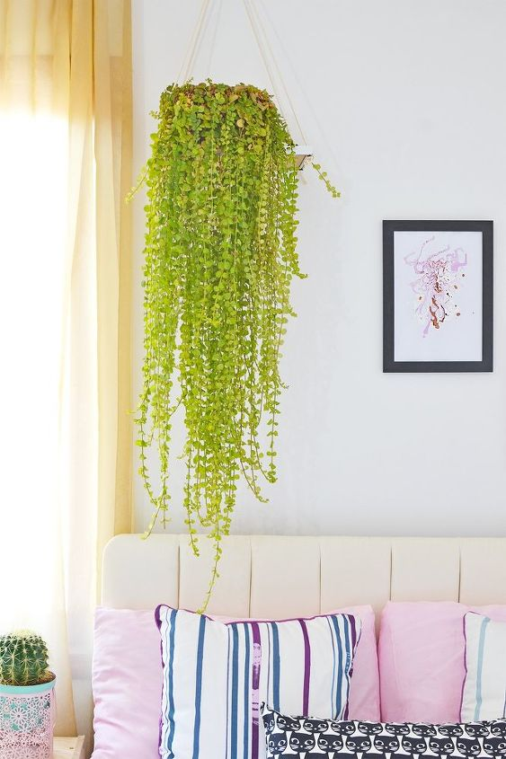 how to turn a plastic frame into a plant holder, gardening, how to