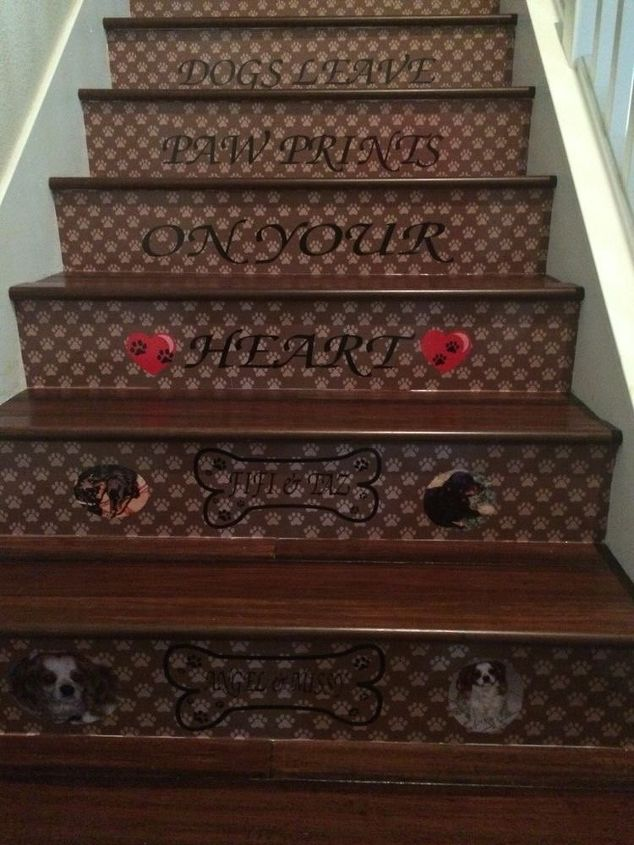 pet stairs, stairs