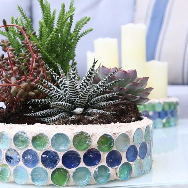 mosaic cookie tin planter, gardening